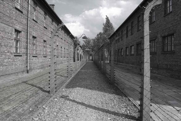 Bild på Auschwitz 1 på en gångväg i grus med taggtråd längs med sidorna.