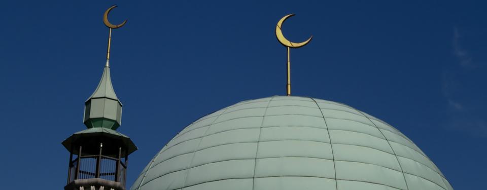 Bilden visar kupoltak på moské samt böneutropstornet.