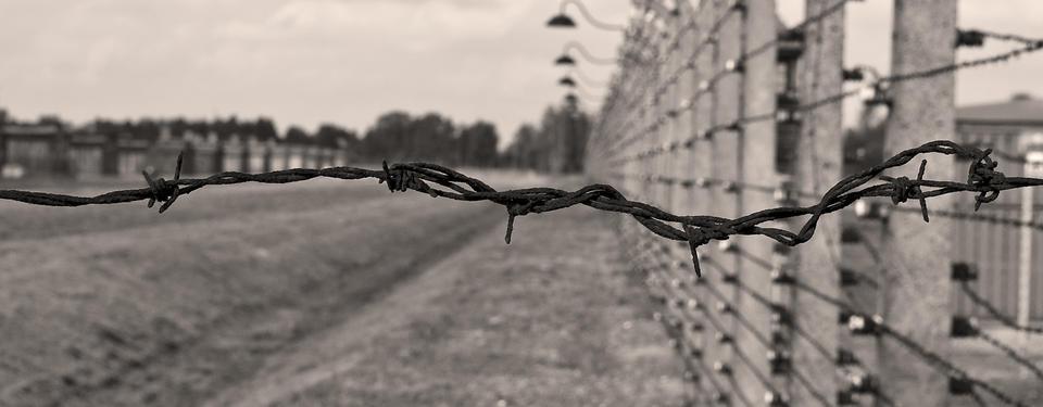 Bilden visar taggtrådsstängsel.