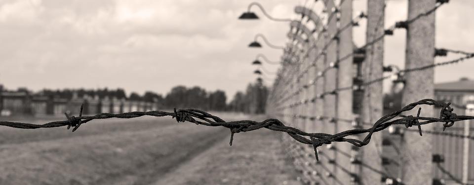 Bilden visar ett taggtrådsstängsel.