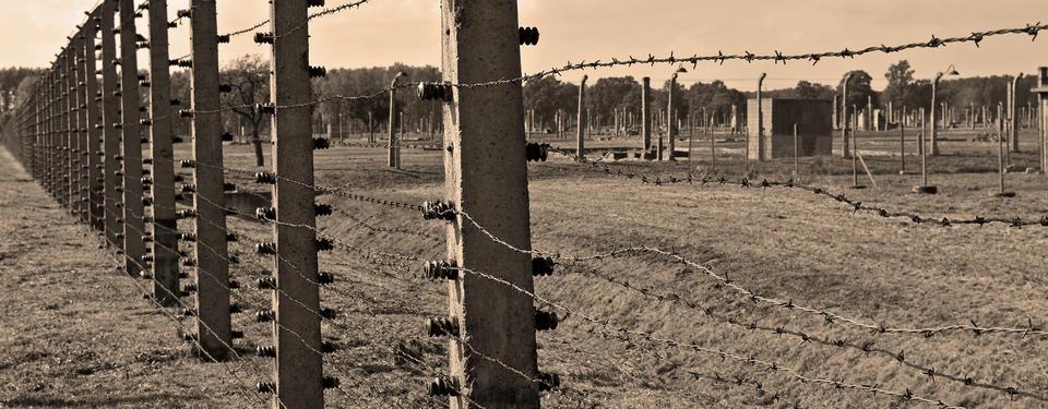 Bilden visar stängsel av taggtråd.