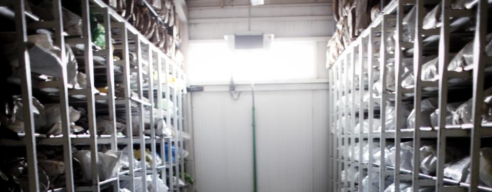 Bilden visar lagerhyllor med fack med plastpåsar.