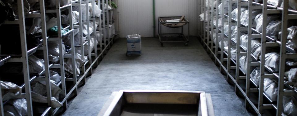 Bilden visar ett rum med hyllor fulla med liksäckar.