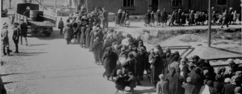 Bilden visar kvinnor och barn som valts ut för avrättning i gaskamrarna gå på led möt döden i Auschwitz