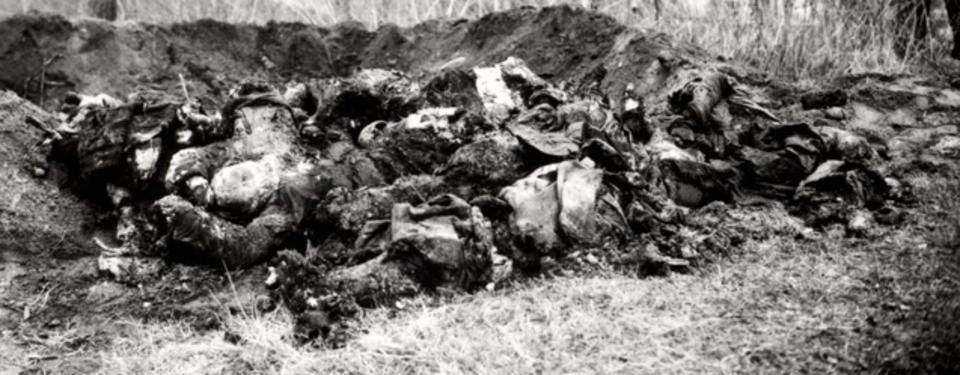 Bilden visar uppgrävt område med oklara objekt.