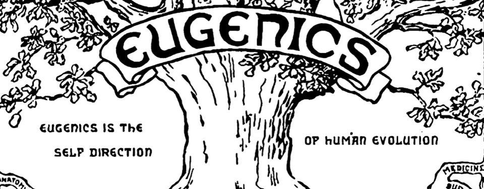 Bilden visar en ritning av ett träd med budskapet: Eugenik är den rätta vägen till människans evolution, precis som ett träd hittar eugenik sin näring från många olika källor och organiserar dem till harmoni. Rötterna, det vill säga källorna, på trädet består av olika vetenskaper till exempel genetik, statistik, psykologi, biologi, medicin med mera.