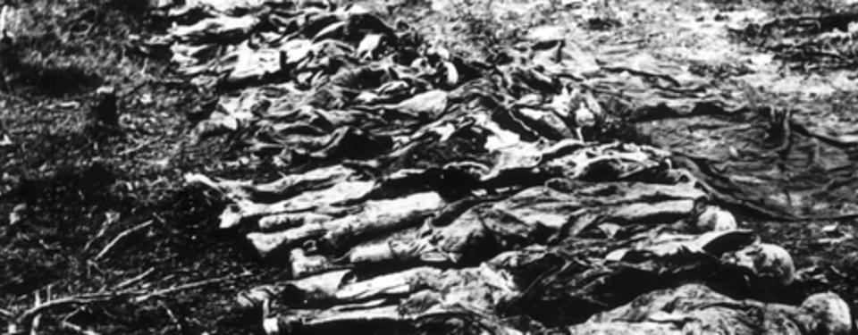 Bild av döda kroppar.