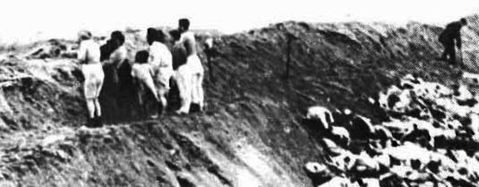 Bilden visar 7 personer på kanten av och med ryggarna mot en stor djupare grop fylld av människokroppar.