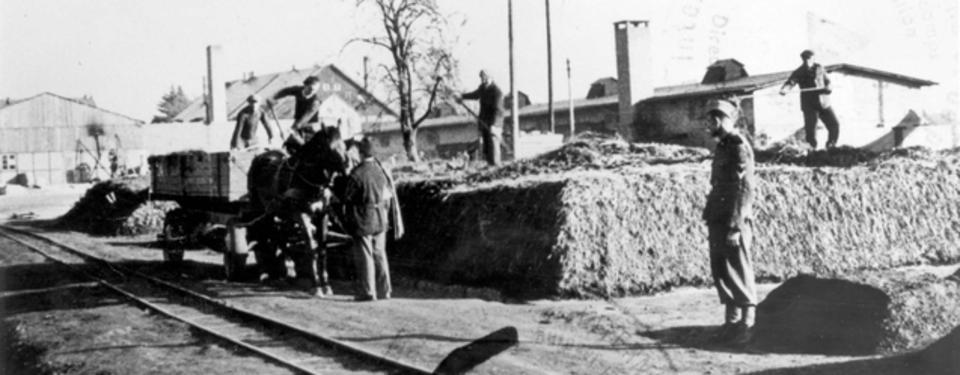 Bilden visar häst med vagn och män som lastar ur, övervakad av soldat.