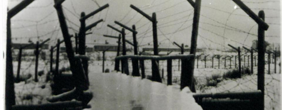 Bilden visar en taggtrådsomgärdad gång i vinterlandskap.